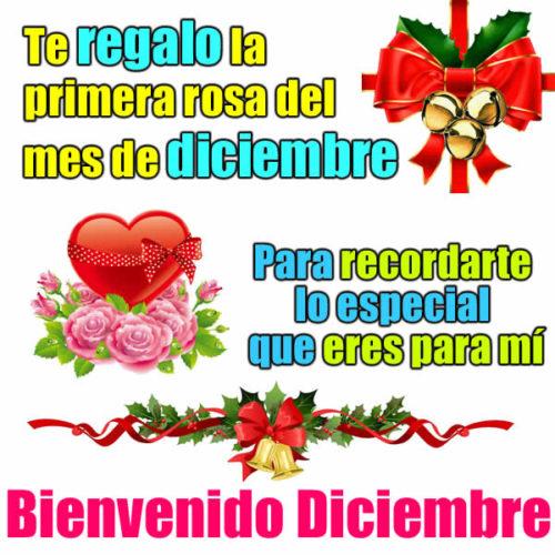 adios-noviembre-bienvenido-diciembre-12