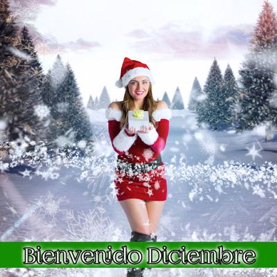 adios-noviembre-bienvenido-diciembre-13