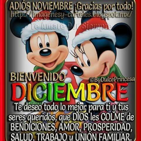 adios-noviembre-bienvenido-diciembre-7