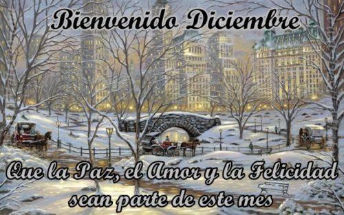 bienvenido-diciembre-con-frases-y-mensajes-28