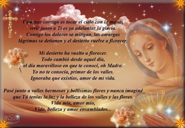 Frases Para El 8 De Diciembre Dia De La Virgen Con Imagenes Informacion Imagenes Benditas mujeres, que en el diario caminar hacen de la historia un grito de libertad. frases para el 8 de diciembre dia de la