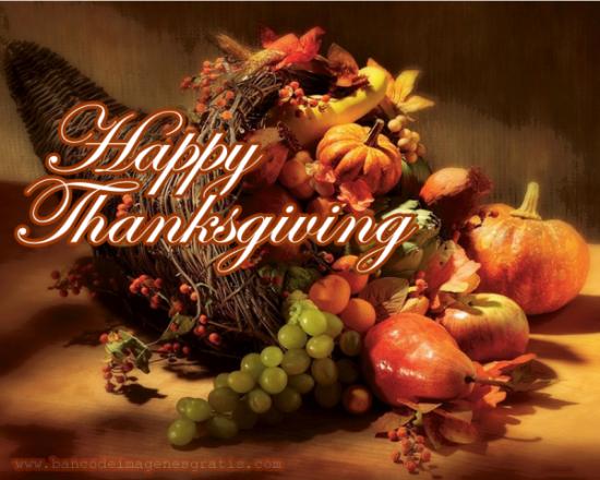 Dia-de-acci_n-de-gracias-thanksgiving-2013-6