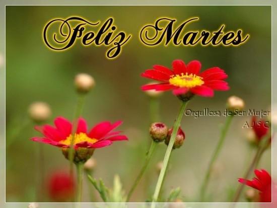 Feliz Martes carteles con mensajes (1)