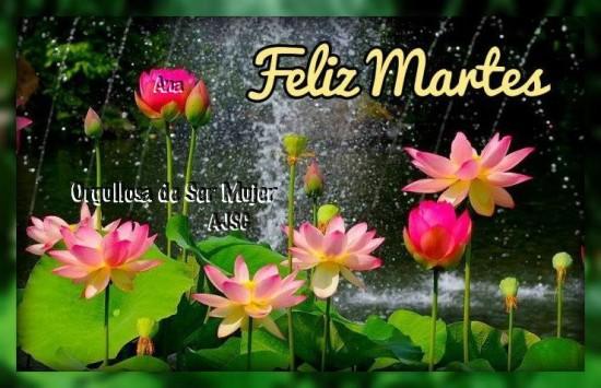 Feliz Martes carteles con mensajes (22)