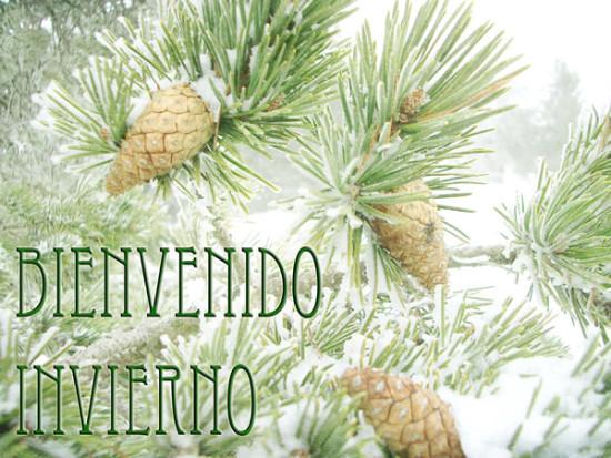Imágenes con frases de Bienvenido Feliz Invierno  (8)