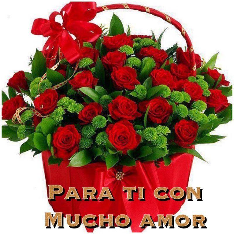 Imagenes De Rosas Rojas Con Frases De Amor Informacion Imagenes