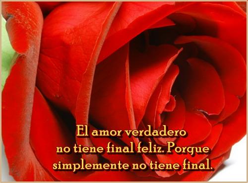 Imágenes De Rosas Rojas Con Frases De Amor Información