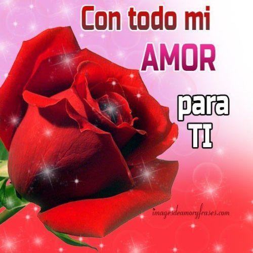 Te Amotia Maribel On Twitter At Lolitaayalan Una Rosa Para Otra
