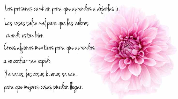 frases-positivas-para-mujeres-4
