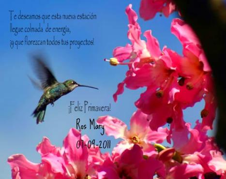 imagenes-para-compartir-de-primavera-6