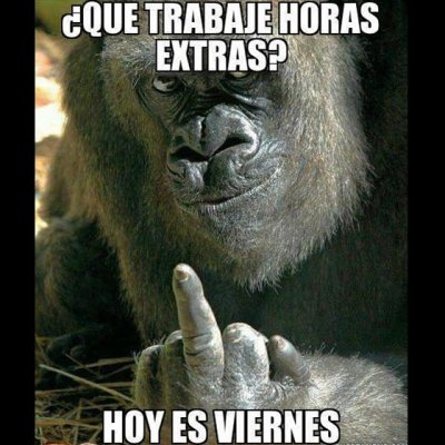 imagenes_chistosas_para_facebook_hoy_es_viernes_