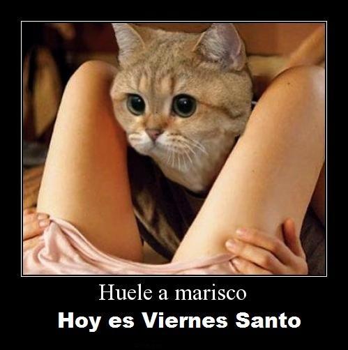 viernes-santo--546832362
