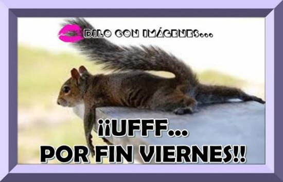 viernes_069