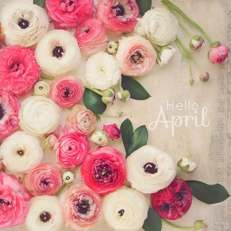 Dawn-Regan-LadyByTheBay-April