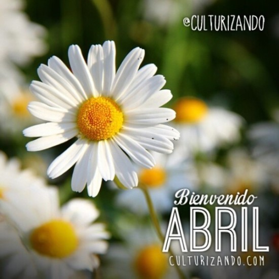 Hola abril (5)