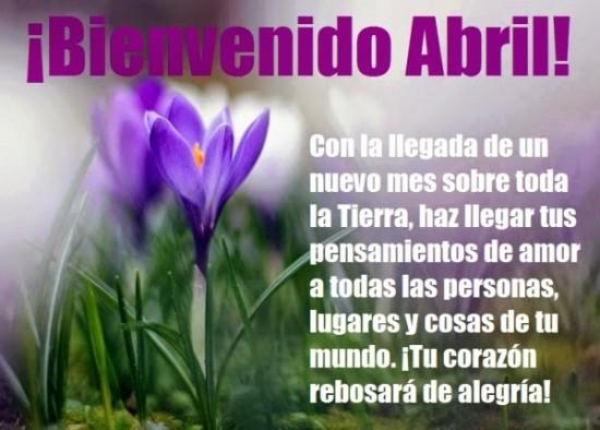 Hola abril (6)