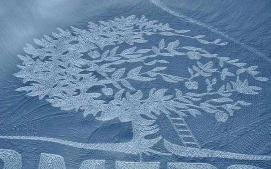 arte en la nieve imágenes  (12)