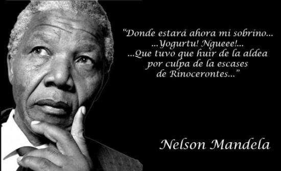 frases en imágenes de Nelson Mandela (21)