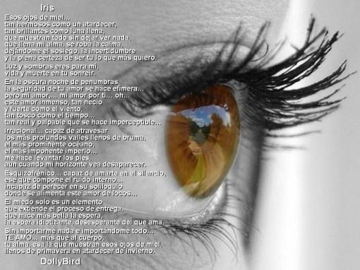 frases reflexionar pensar dedicar  (19)