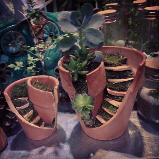 macetas recicladas para el jardin (4)