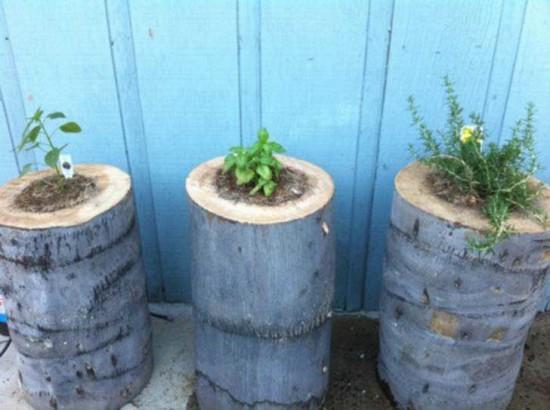 macetas recicladas para el jardin (9)