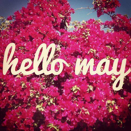 89120-Hello-May