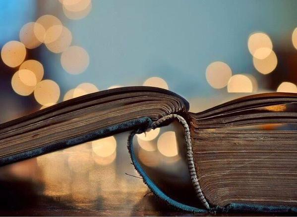 Dia-del-libro (9)