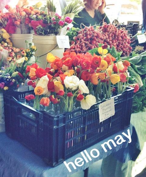 Hello-May (4)