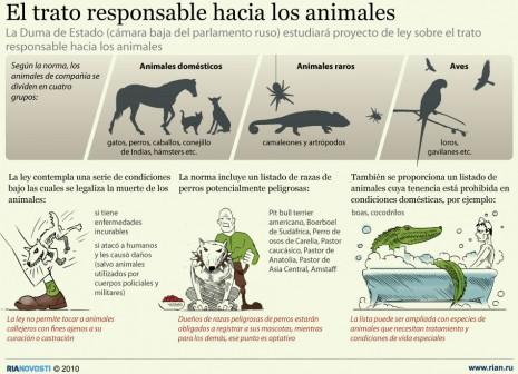 Infografias de Perros  (1)
