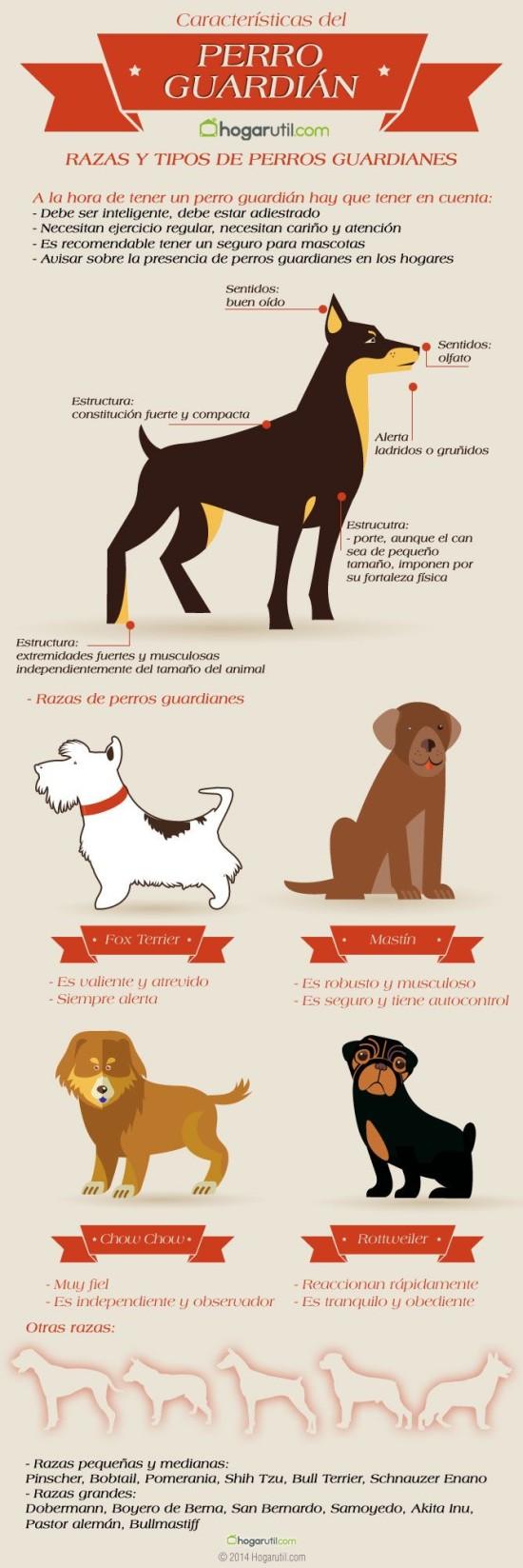 Infografias de Perros  (4)