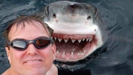 Selfies con amimales (16)