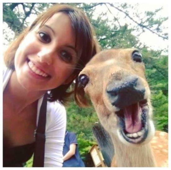 Selfies con amimales (4)