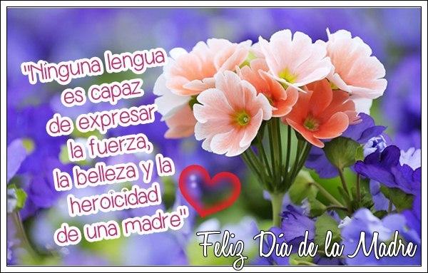 flores-fondo-lila