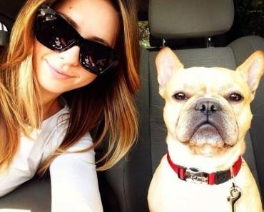selfies divertidas con Animales (10)
