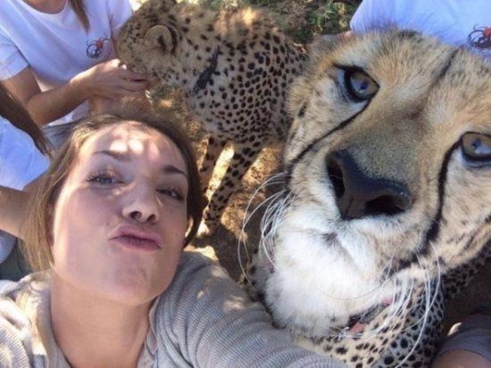 selfies divertidas con Animales (11)