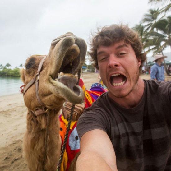 selfies divertidas con Animales (13)