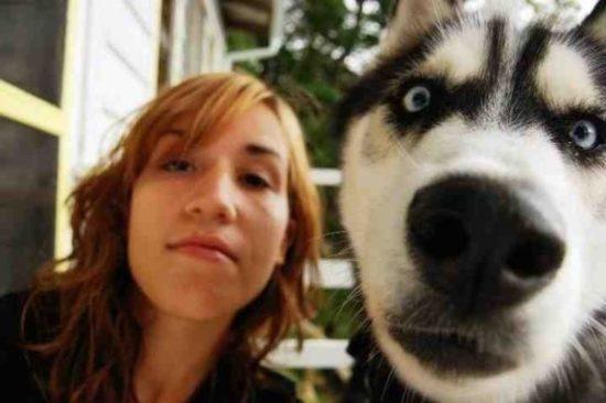 selfies divertidas con Animales (3)