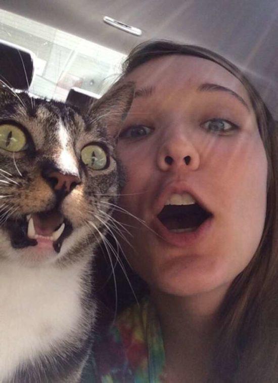 selfies divertidas con Animales  (6)