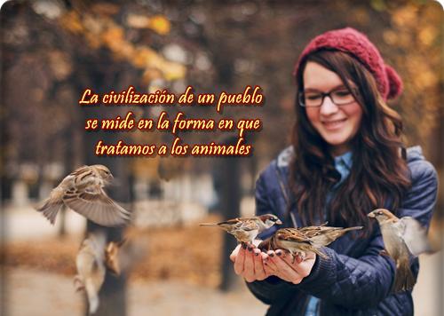 Animales con frases para Reflexionar  (3)