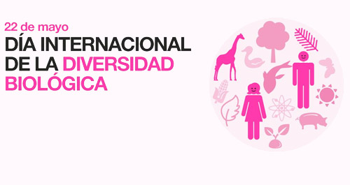 Día de la Biodiversidad  (23)