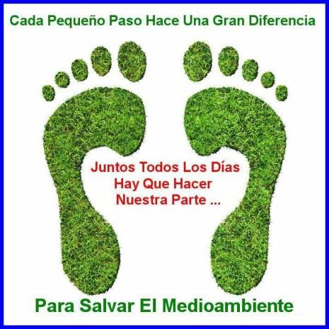 Día-del-Medio-ambiente-Frases-y-mensajes-19