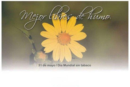 Dia-Mundial-Sin-Tabaco-2012-11-550x366
