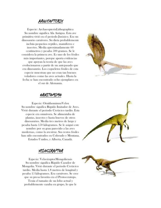 Dinosaurios información (10)