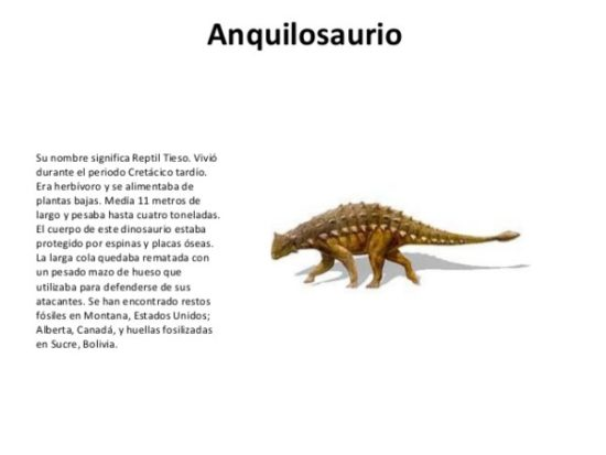Dinosaurios información (12)