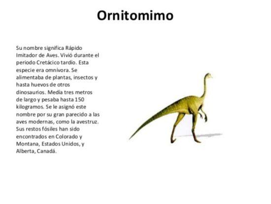 Dinosaurios información (13)