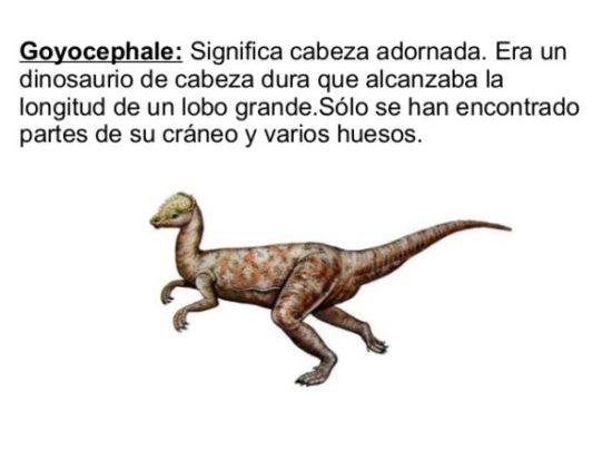 Dinosaurios información (15)