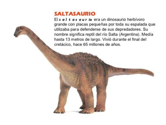 Dinosaurios información (19)