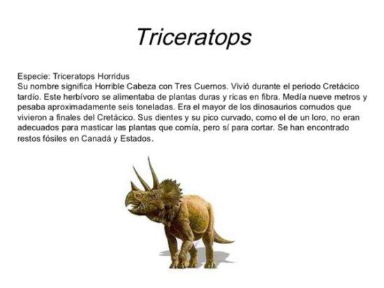 Dinosaurios información (8)