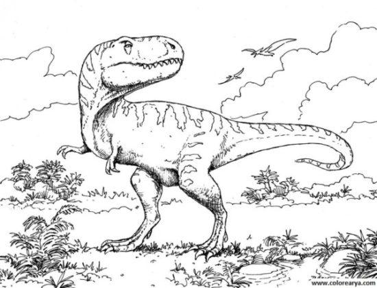 Dinosaurios para colorear dibujos (5)