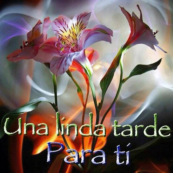 Imagenes-Buenas-Tardes-sinceros